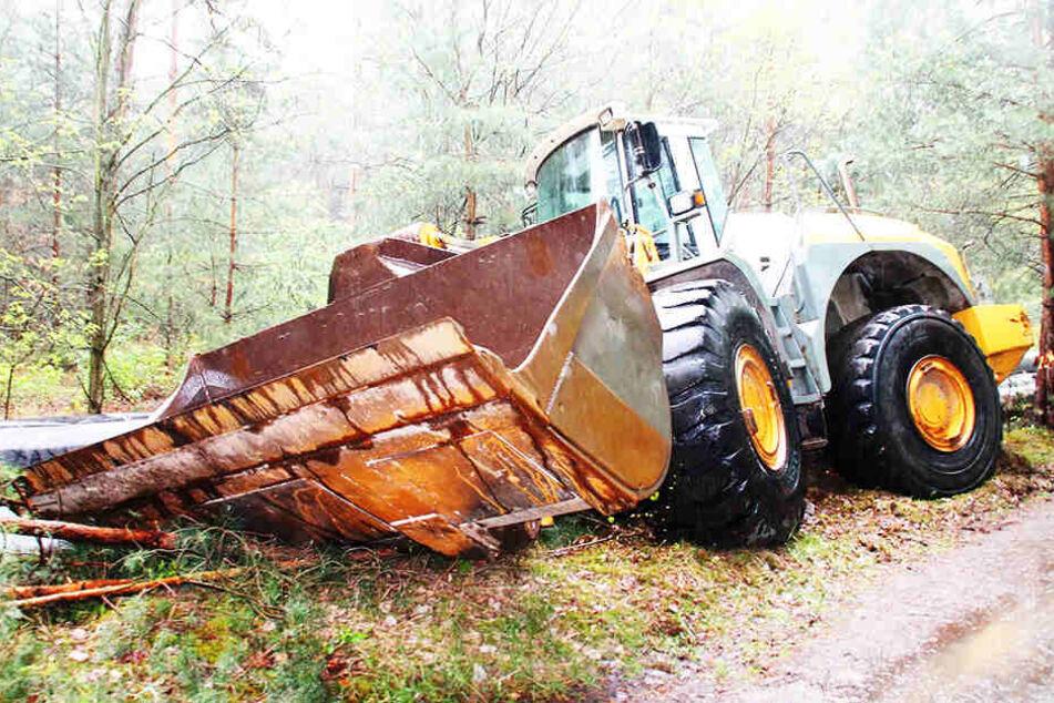Im Wald bei Hoyerswerda entdeckten Passanten einen gestohlenen Radlader.