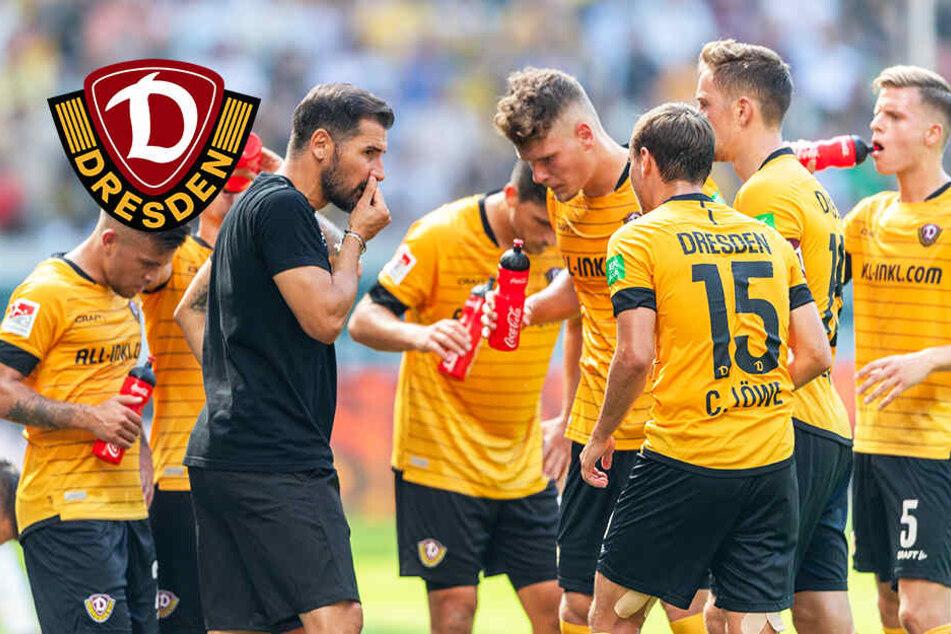 Dynamo Dresden bestreitet morgen Testspiel gegen Halle