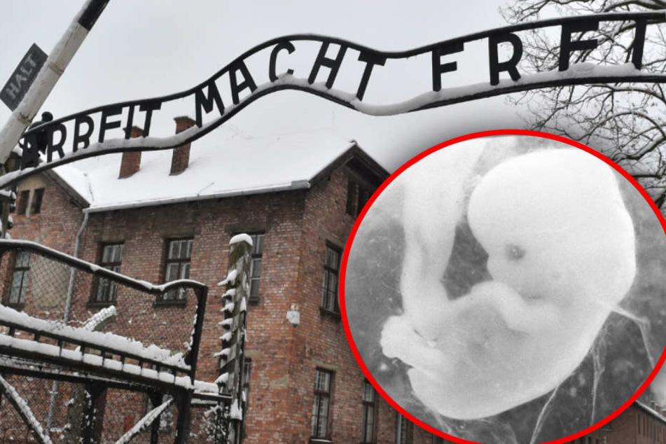 Der Slogan der Broschüre erinnert an das NS-Vernichtungslager Auschwitz. (Bildmontage)