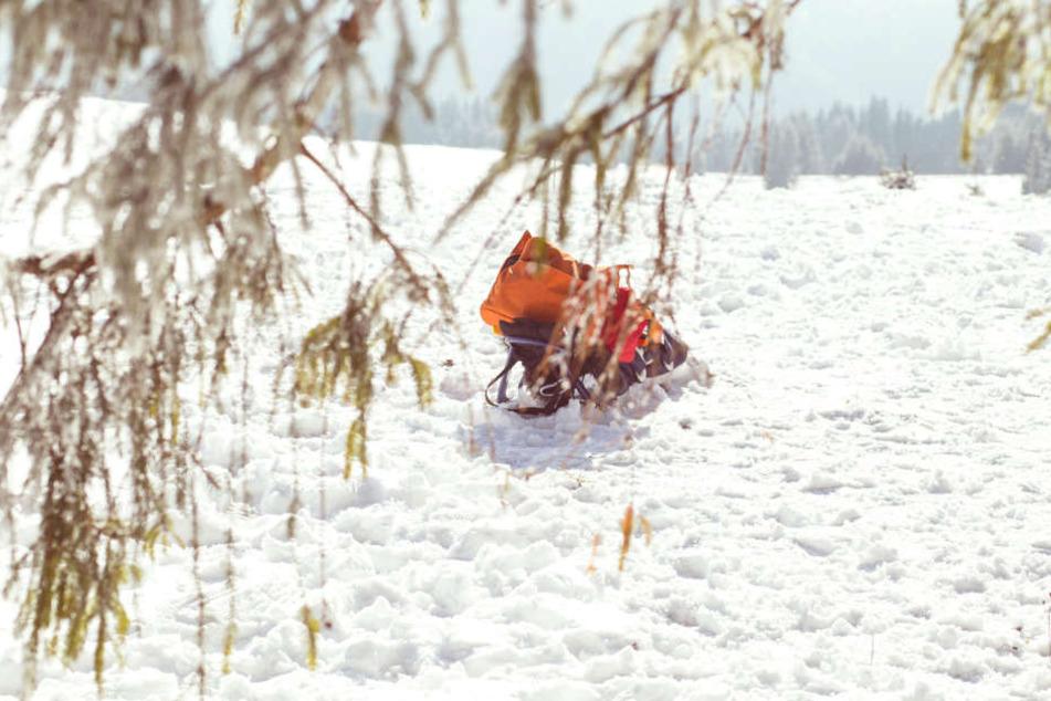 In Schweden starb jetzt eine Frau an einer Unterkühlung in einem Wald. (Symbolbild)