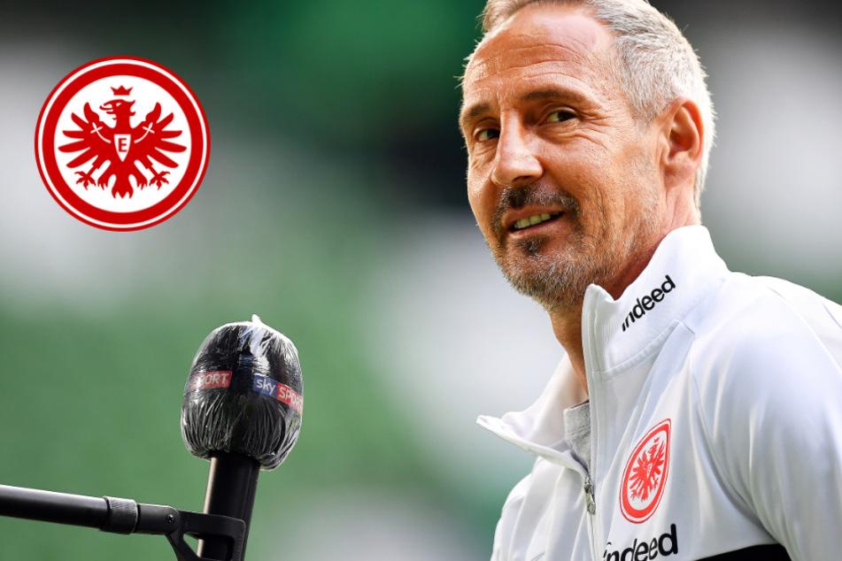 Nach Sieg in Eindhoven: Frankfurts Trainer lobt die Eintracht-Profis