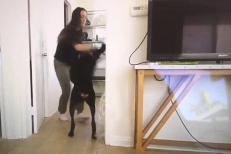 Brooke schlägt ihren Dobermann.