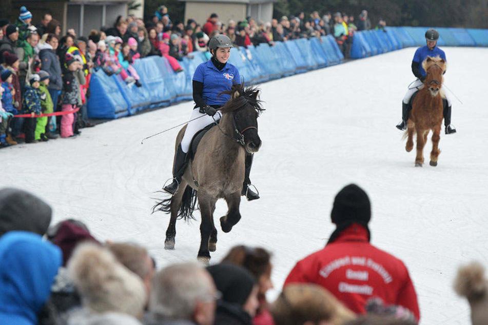 Zum Jubiläums-Winterfest der Chemnitzer Eisbahn lieferten sich Ponys und Pferde ein Wettrennen mit Eissportlern.