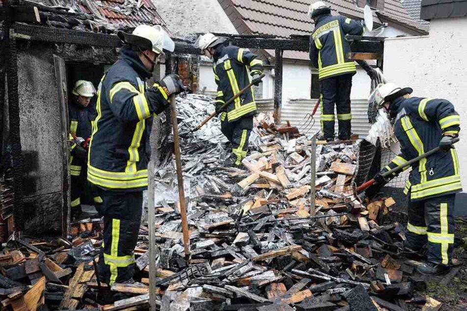 Als die Feuerwehr sah, mit was sie es zu tun hatte, löste die Großalarm aus.