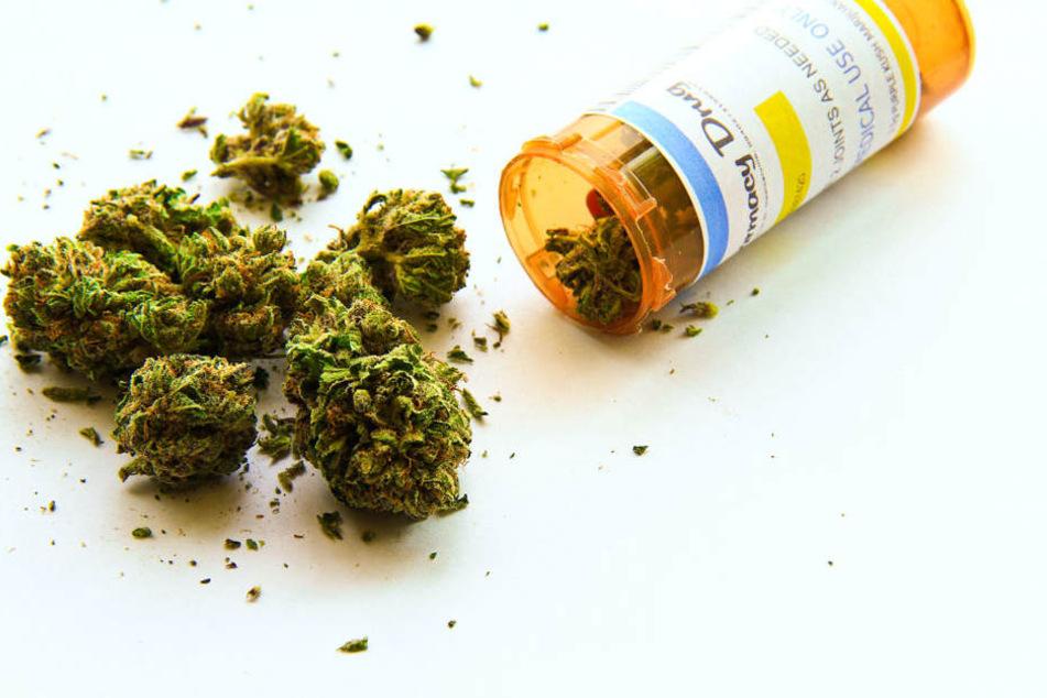 Weitere Einsatzmöglichkeiten von Cannabis werden gerade erforscht.