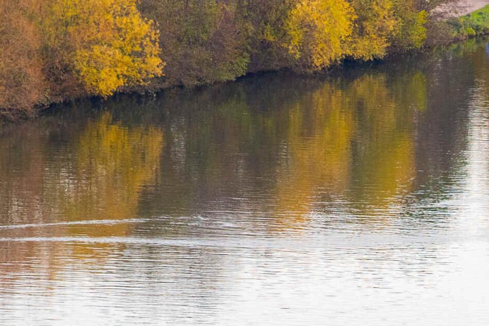 Passant findet Leichenteile am Ufer des Neckars