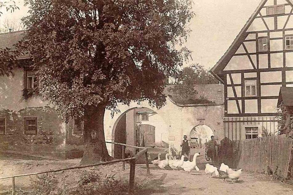 Das Anwesen (Foto von 1929) war über Jahrhunderte in Familienbesitz.