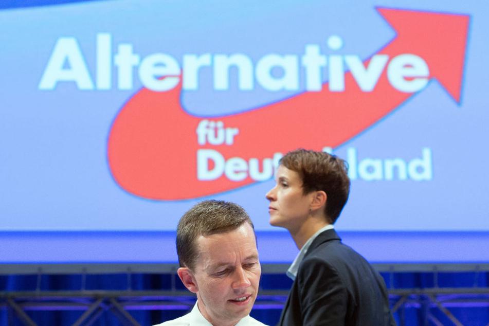 Die AfD und Frauke Petry gehen getrennte Wege, dennoch wählte sie die Partei zur Bundestagswahl.