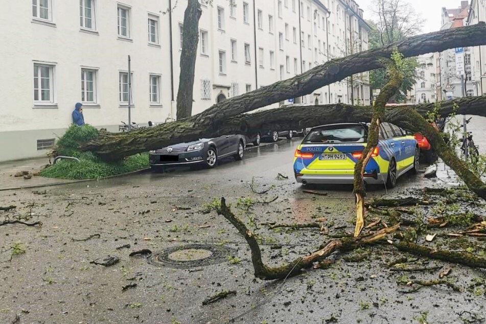 Eine Polizistin ist bei einer Verkehrskontrolle in München durch ein herabfallendes Stromkabel verletzt worden.