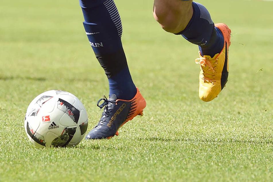 Regionalliga Südwest: Ende Juli startet die Saison 2017/18.