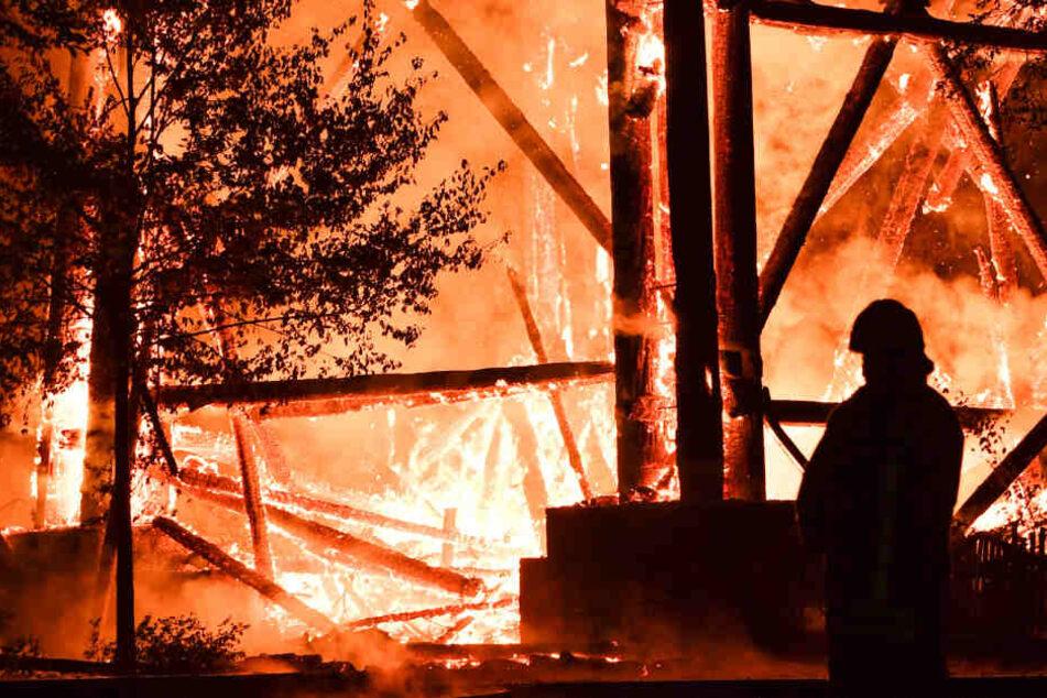 Der Goetheturm im Frankfurter Stadtwald wurde am 12. Oktober 2017 ein Raub der Flammen.
