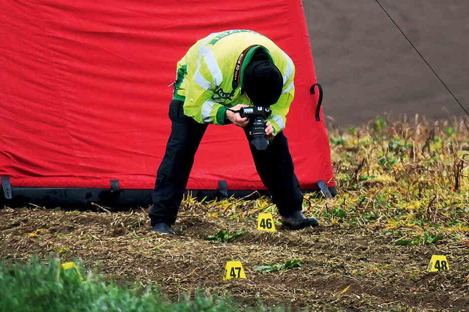 Ein Beamter untersucht die frischen Reifenspuren auf dem Feld. Das Opfer soll  überfahren worden sein.