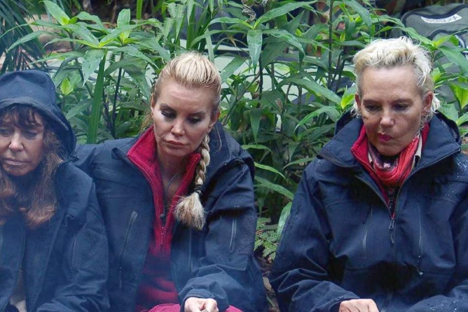"""Teamchef Daniele hat schlechte Nachrichten für (v.l.) Polka-Tina, Witwe Gsell, Natascha. Regelverstöße! Die Konsequenz: Die Raucher bekommen wieder bis auf Weiteres keine Zigaretten mehr."""""""