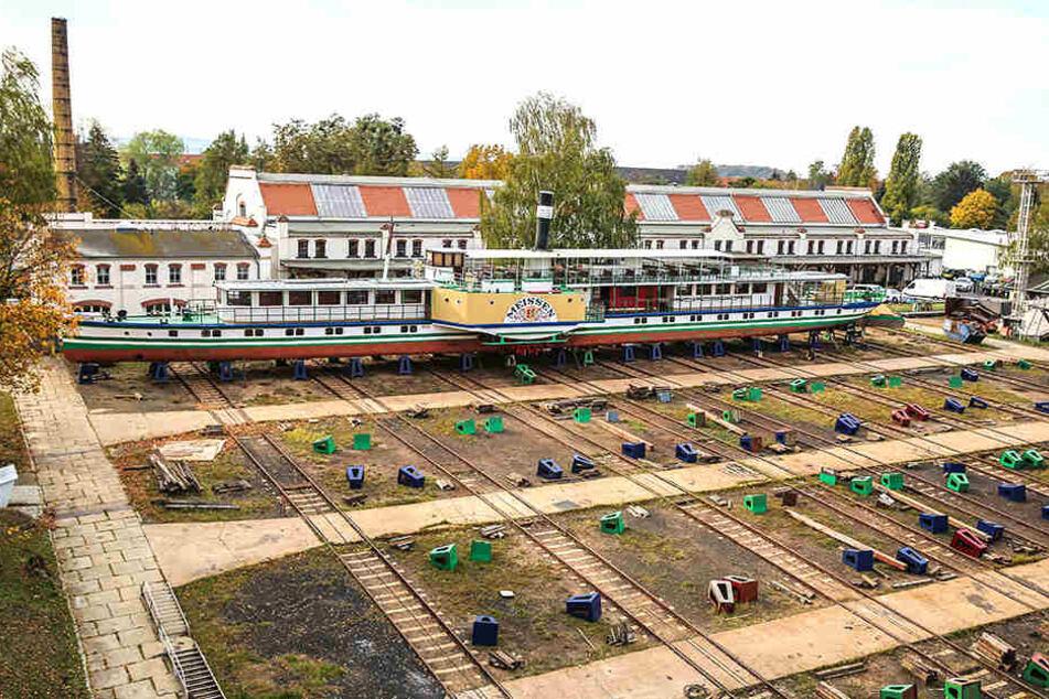 Das Werftgrundstück an der Elbe ist attraktiv für Investoren.