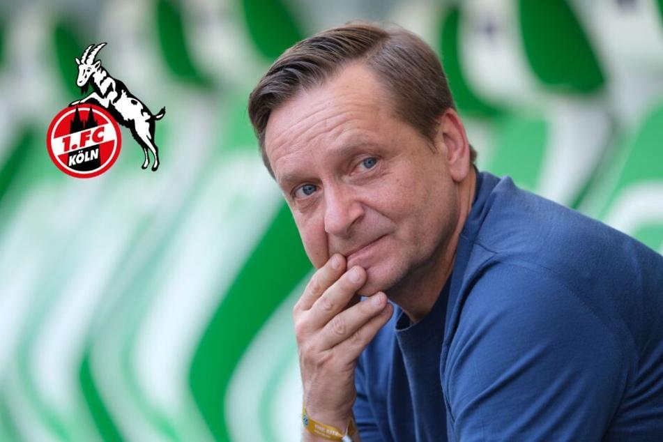 Wird Horst Heldt neuer Sportchef beim 1. FC Köln?