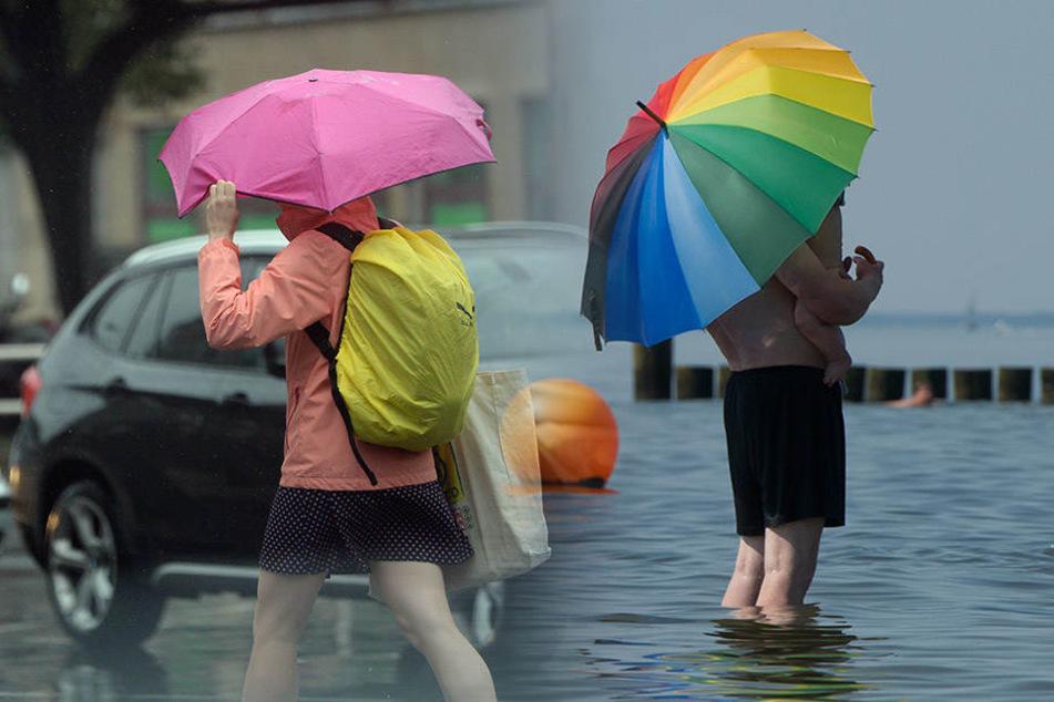 Aus Regenschirm wurde Sonnenschirm. Den Berlinern und Brandenburgern wird das ausbleibende Unwetter sicherlich gefreut haben. (Bildmontage)