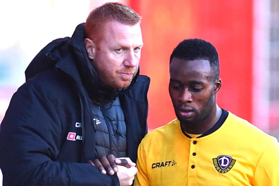 Nach einer Auswechslung klatschen Dynamo-Coach Maik Walpurgis und Erich berko miteinander ab.