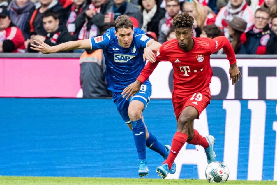 Robert Skov von Hoffenheim (l.) und Kingsley Coman vom FC Bayern München im Zweikampf um den Ball.