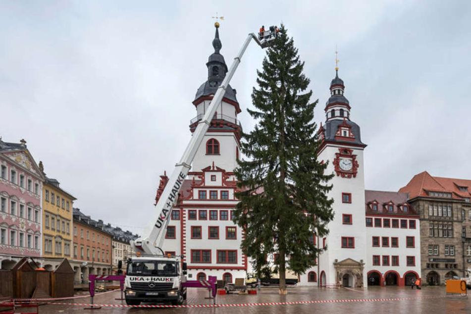 Der Weihnachtsbaum wird mit Lichterketten beschmückt.