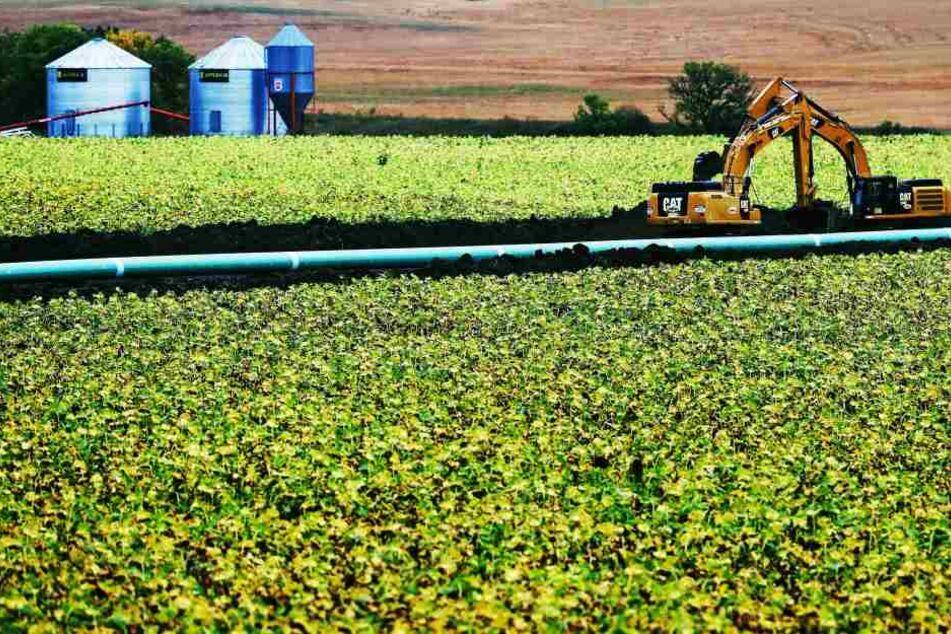 Knapp 800.000 Liter Öl sind in South Dakota ausgelaufen.