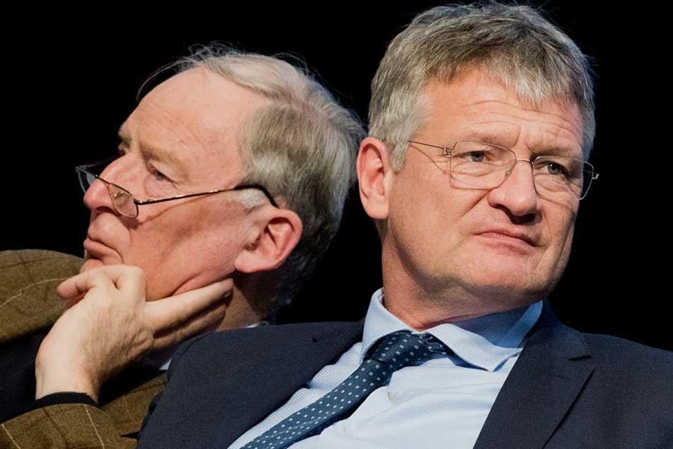Die AfD-Vorsitzenden Jörg Meuthen (r) und Alexander Gauland brauchen für ihre Partei dringen Geld.