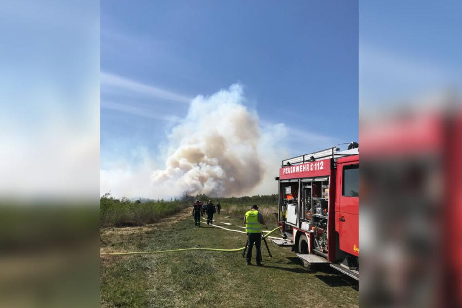 Ein Moorbrand bei Goldenstedt löst dichte Rauchentwicklung aus. Wegen starken Windes und der Trockenheit breitete sich der Brand schnell auf einer Fläche von mehreren Hektar aus.