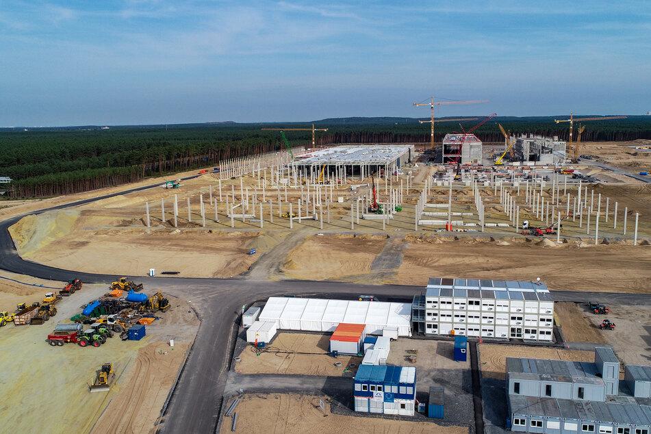 Die Kritik am Bau der Tesla-Fabrik in Grünheide wird lauter.