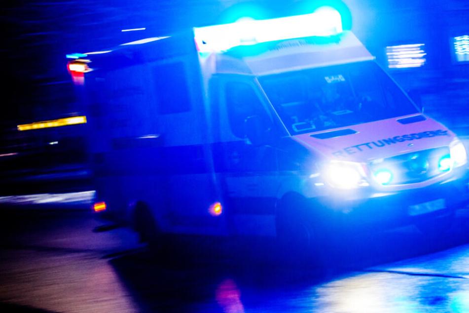 Horror-Unfall: Auto schleudert in Wald, zwei Menschen tot