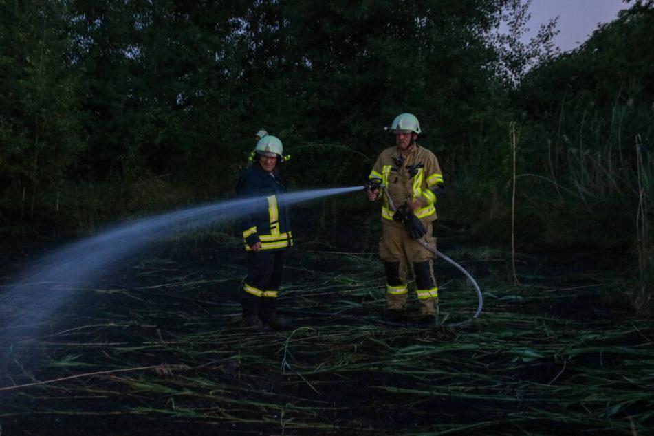 Die Feuerwehr Brandenburg musste am Dienstagabend zu einem offenbar gelegten Feuer in Oberkrämer ausrücken.
