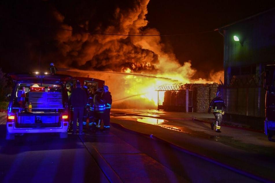 Insgesamt waren etwa 10.000 Quadratmeter betroffen. Der Schaden liegt bei rund 15.000 Euro.