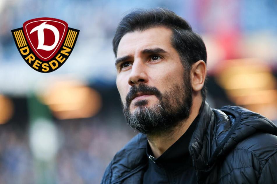 Dynamo: Welcher Trainer wird Nachfolger von Cristian Fiel?