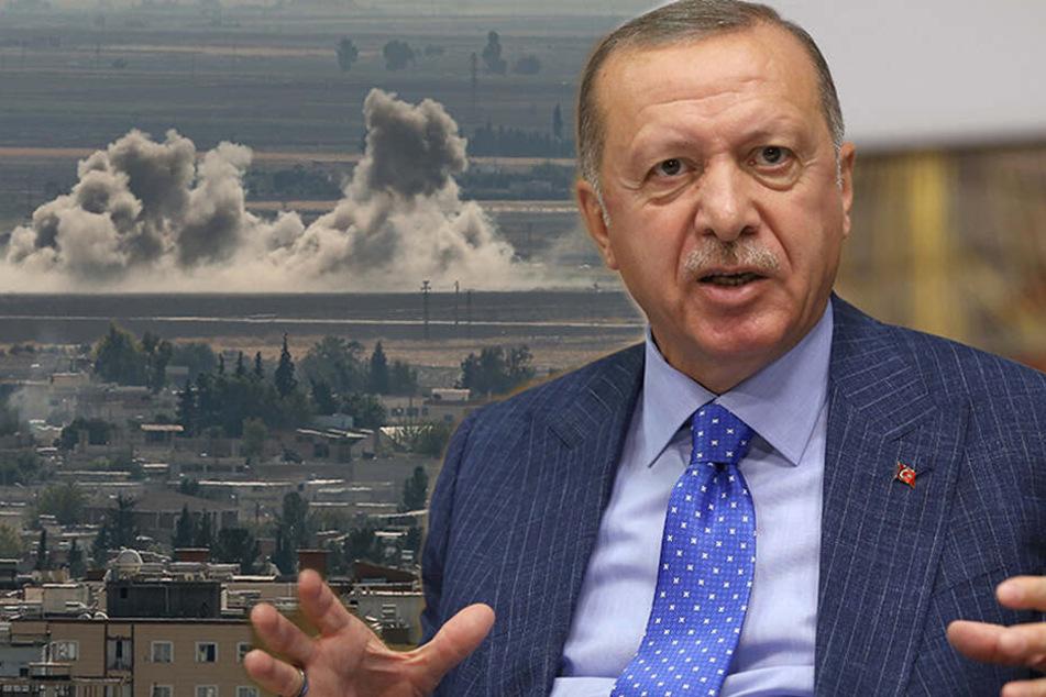 Erdogan will Krieg, für Deutschland hat er nur Spott übrig
