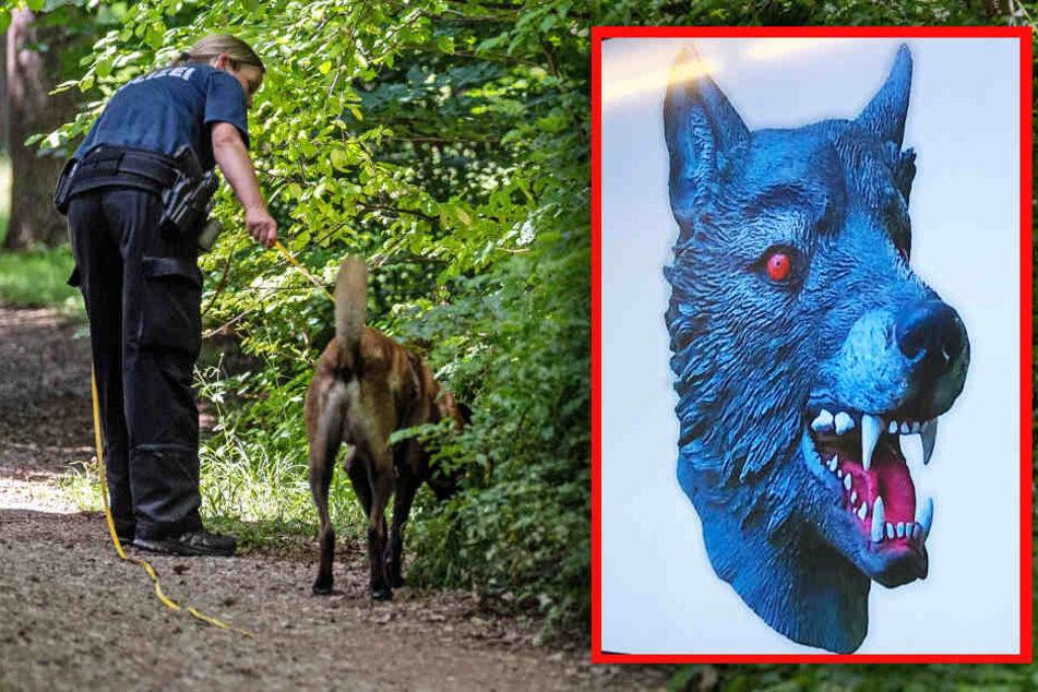 Wolfsmasken-Mann vergewaltigt Mädchen: Täter ist vorbestrafter Kinderschänder!