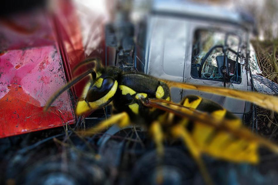 Der Lkw erlitt einen Totalschaden. (Bildmontage)