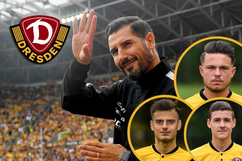 Dynamo Dresden: Setzt Fiel (noch) mehr auf den Nachwuchs?