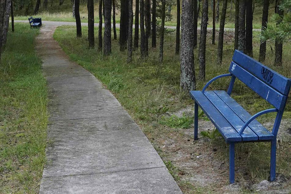 Ein schöner Park, doch definitiv nicht der Maxim-Gorki-Park.