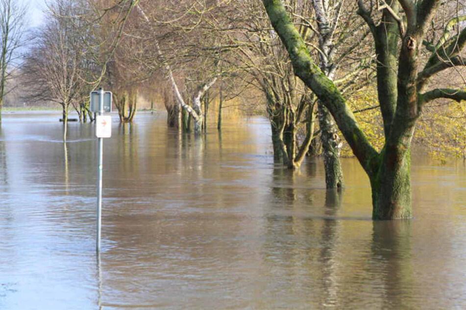 Der Pegel steigt! Land unter an Weser und Werre