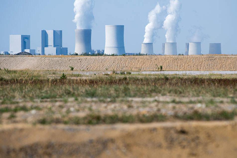 Blick auf die teils rekultivierte Fläche im Tagebau Nochten. Der Ausstieg aus der Kohle im Jahr 2038 kostet viel Geld.