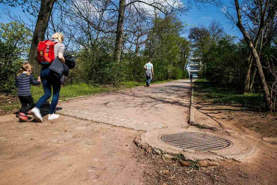 Im Alaunpark sollen Wege saniert werden. Das Geld dafür macht der Stadtbezirksbeirat locker.