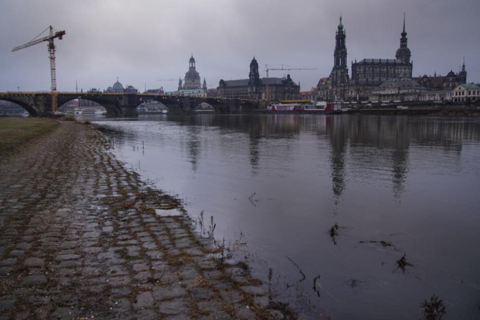 """""""Wir brauchten diesen Regen"""": So sah das Flussbett der Elbe am vergangenen Freitag in der Dresdner Innenstadt aus."""