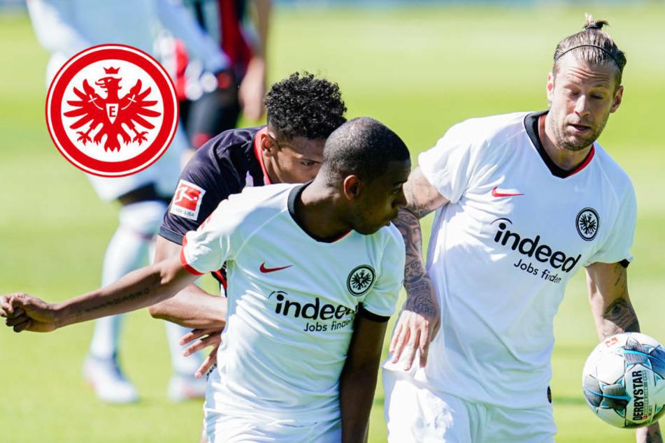 Abschieds-Geschenk: Russ, Fernandes und de Guzman im Eintracht-Kader