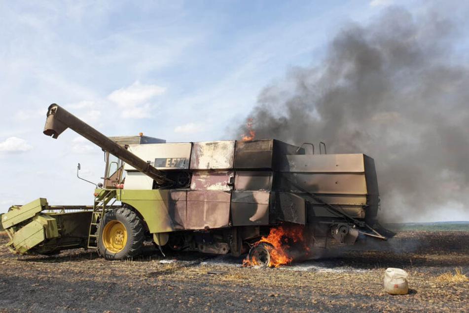 Erntemaschine und Feld stehen in Chemnitz in Flammen
