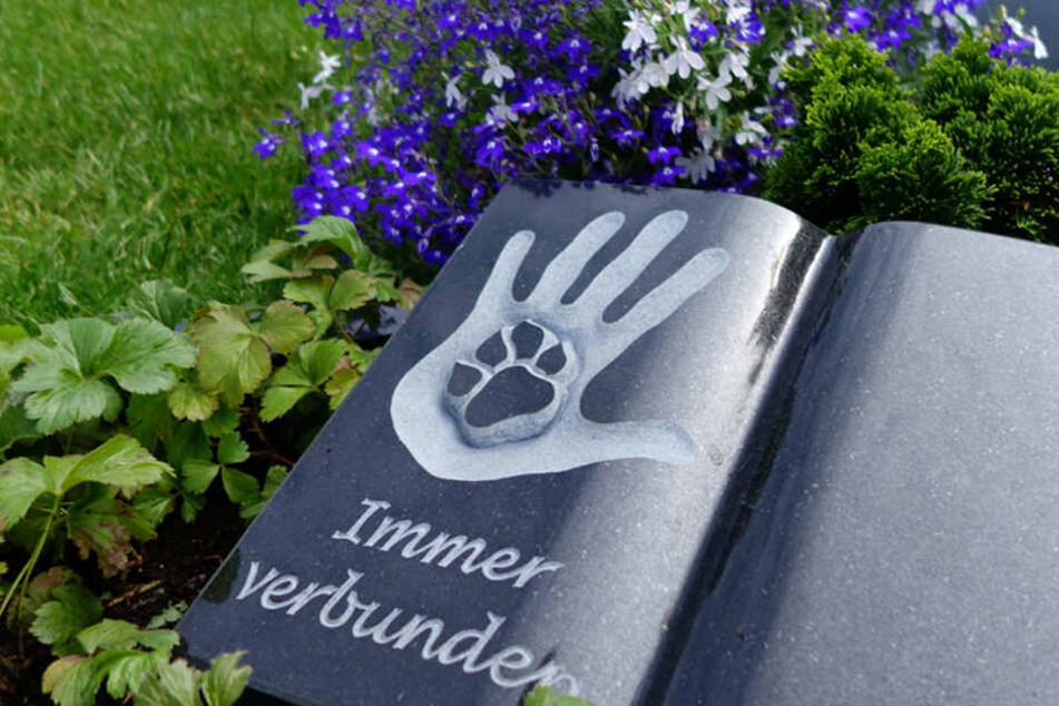 So könnte ein gemeinsames Grab für Mensch und Tier aussehen.