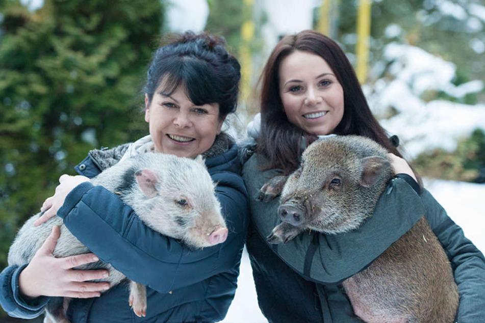 Schwein gehabt - Maxi Arnold (50) und Tochter Frizzi (27) lieben ihre Glücksschweine Otti und Nilo.