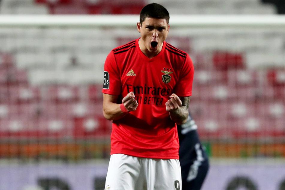 Darwin Núnez (21) von Benfica soll das Interesse des FC Bayern München auf sich gezogen haben. Der Youngster ist ein Mega-Talent.