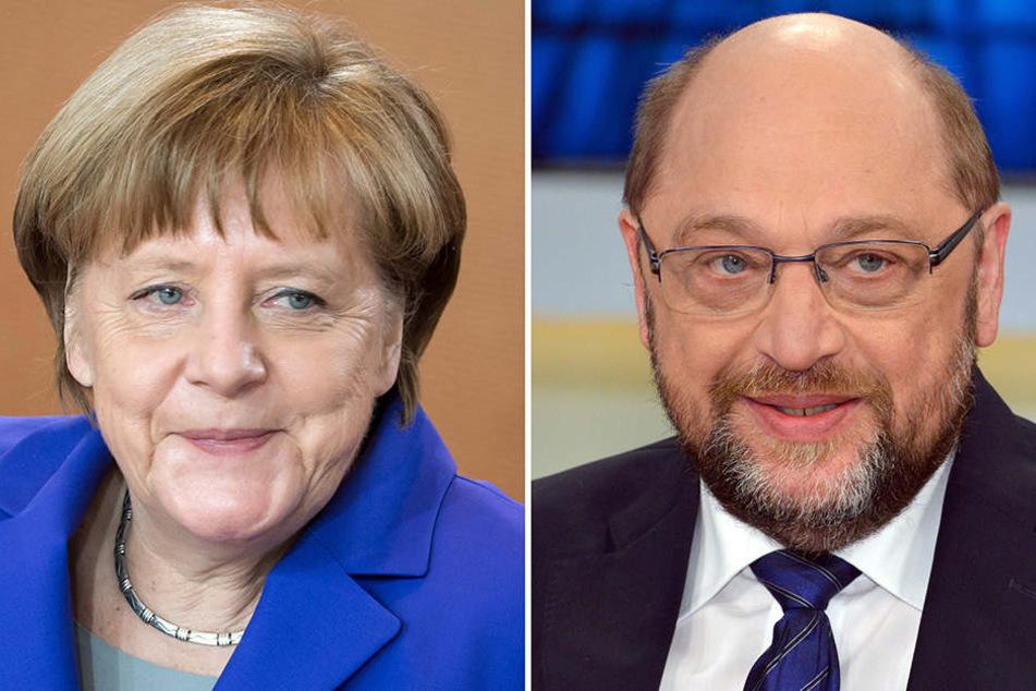 Während sich Merkel und Schulz auf ihr Wahlprogramm und das Bundeskanzleramt konzentrieren, kletterte die AfD auf den dritten Platz der Umfrage.