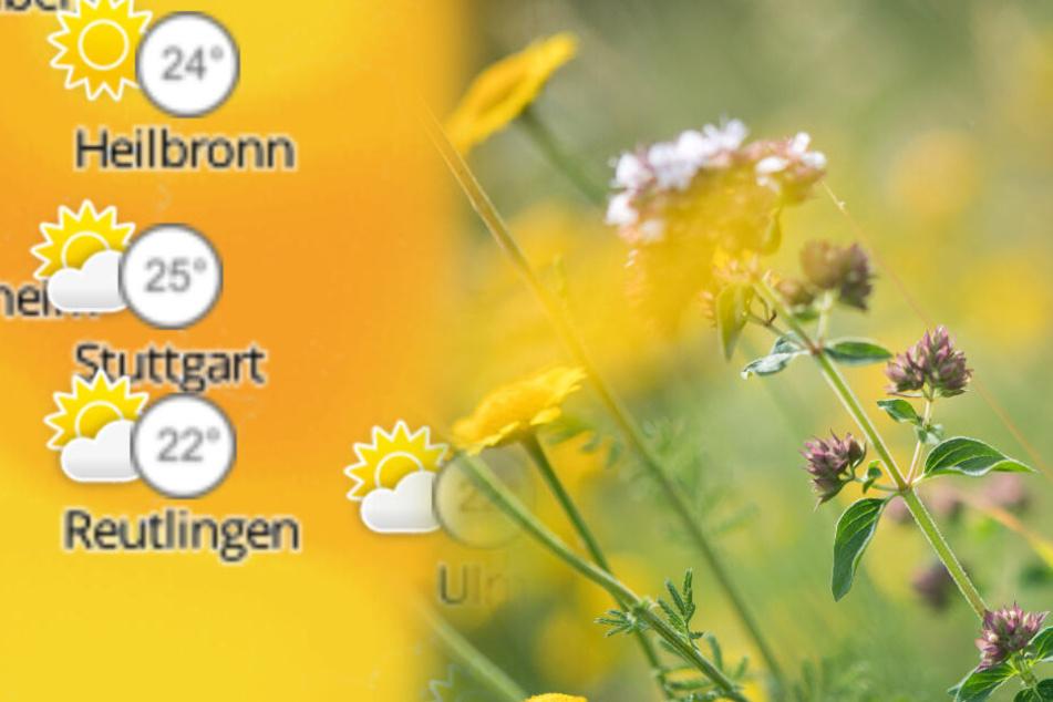 Sonne oder Wolken? Wie wird das Wetter in Baden-Württemberg?