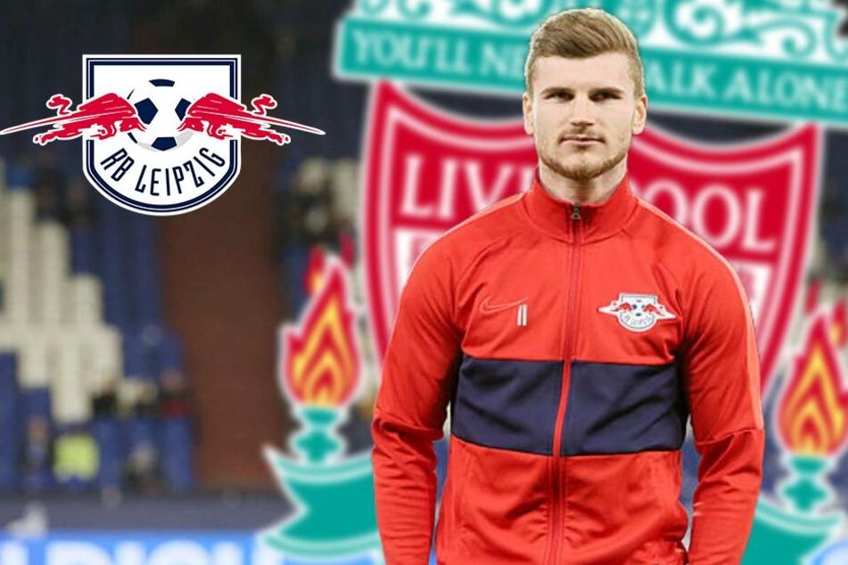"""RB Leipzigs Topstürmer Werner nach Liverpool? """"Es spricht vieles dafür..."""""""