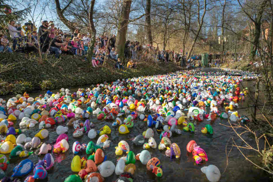 Tausende Enten und Rammstein: Das geht am Wochenende in Thüringen