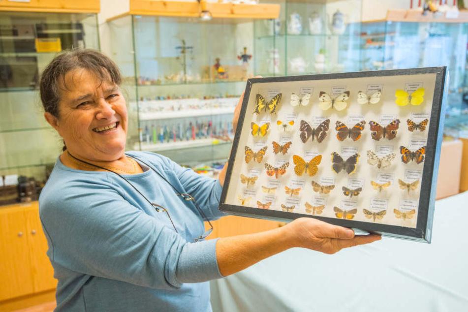Neben reichlich Kuriosen gibt's auch Einblicke in die Welt der Insekten. Gelia Weiß präsentiert eine Schmetterlings-Sammlung.
